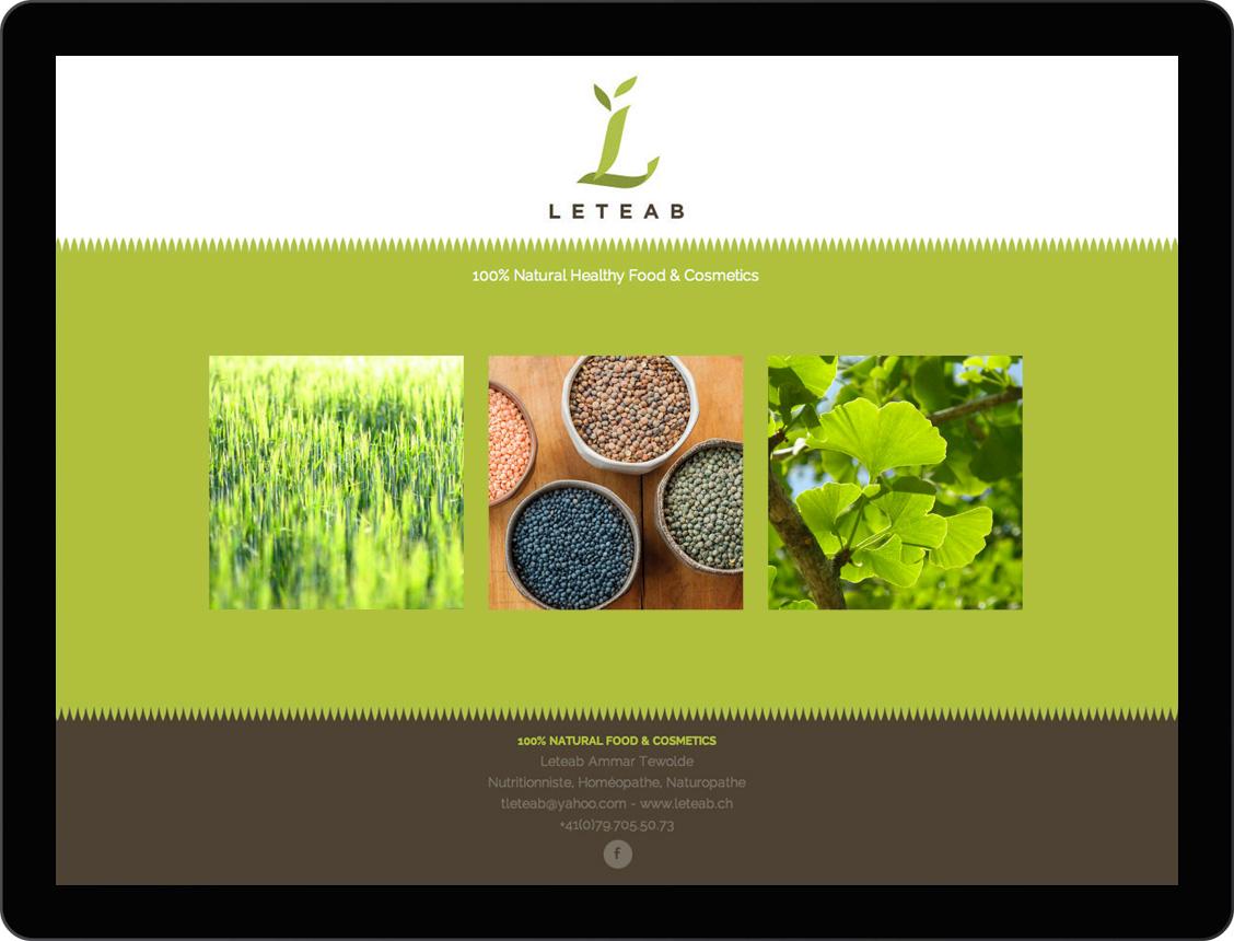 etche-web-design-leteab