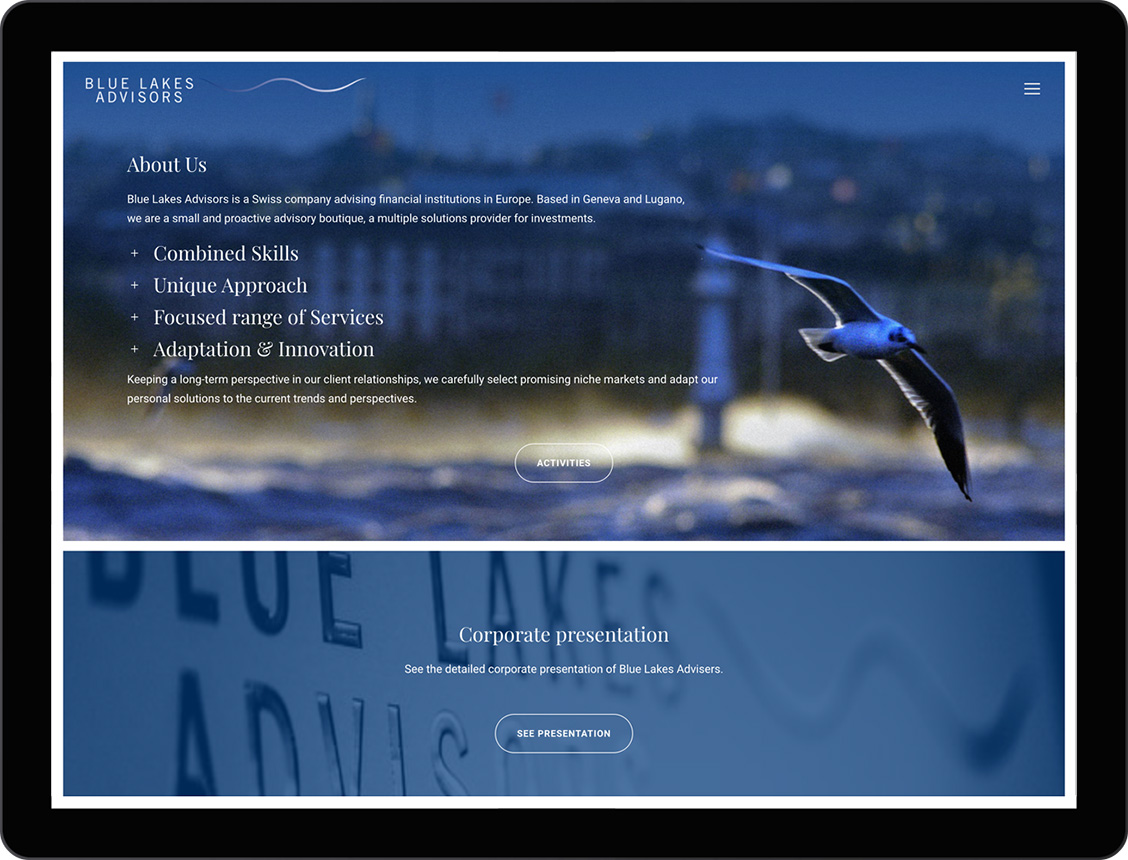 etche-web-design-blue-lakes-advisors-01-portfolio
