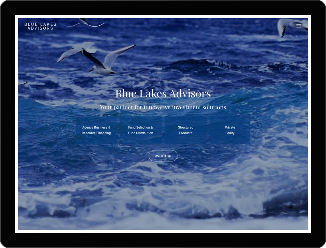 etche-web-design-blue-lakes-advisors-02-portfolio
