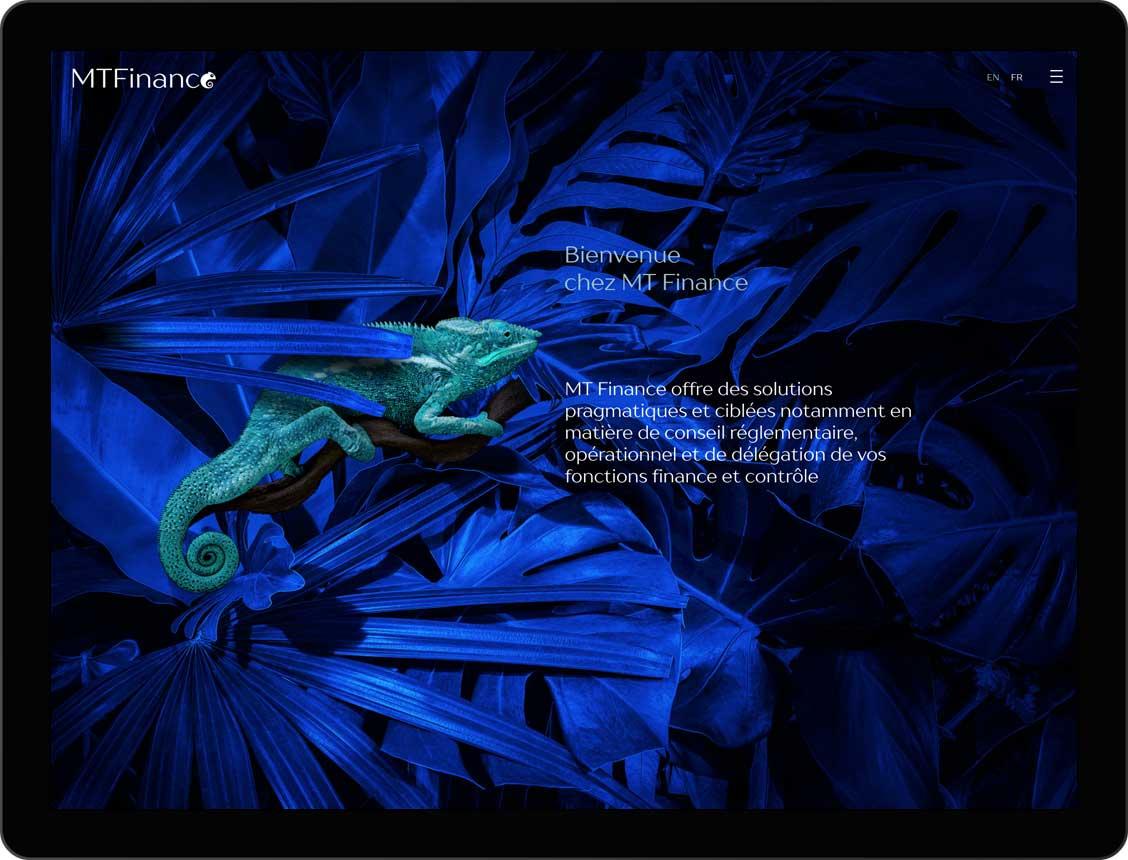 etche-webdesign-mt finance-homepage